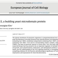 My first scientific publication